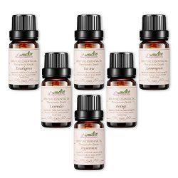 Aromatherapy Oils Top 6 Essential Oil Gift Set Pure Natural Therapeutic Grade Oils -Lavender, Te ...