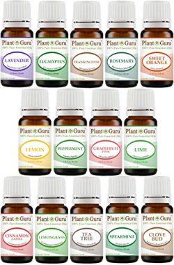 Essential Oil Set 14 – 10 ml Pure Therapeutic Grade Includes Frankincense, Lavender, Peppe ...