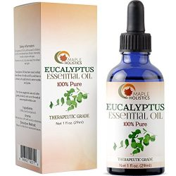 100% Pure Eucalyptus Essential Oil for Diffuser and Aromatherapy Undiluted Therapeutic Grade Pre ...